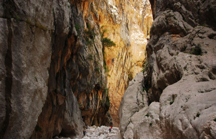 Gorropu-interno-canyon