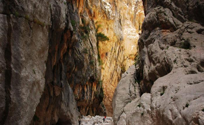 Gorropu-interno-canyon